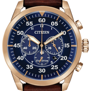 Men's Citizen Eco-Drive Avion Watch